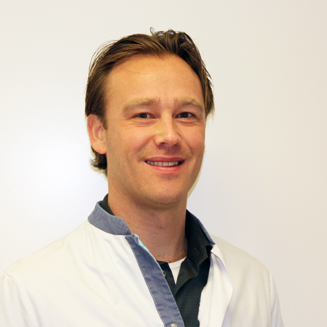 De heer dr. T.  Hillenaar