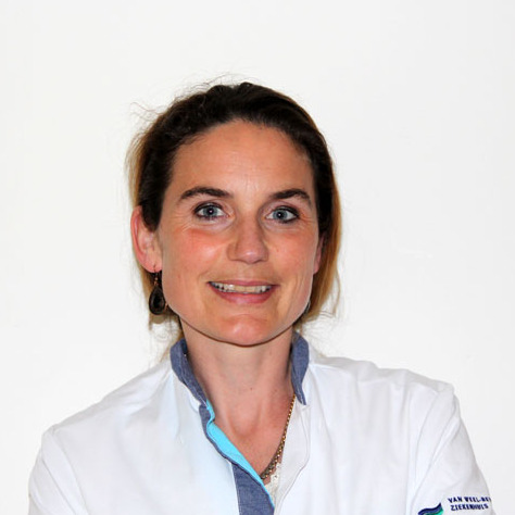 Mevrouw dr.  R.P.M.  Brosens
